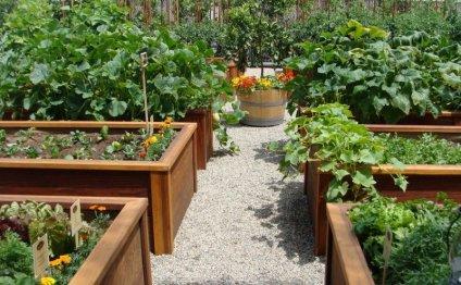 Как сделать красивый сад - 4