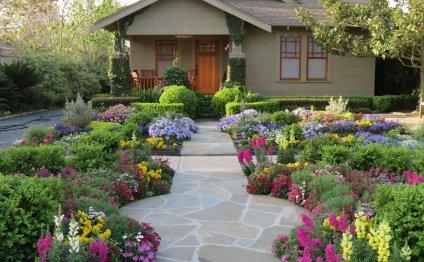 Первоцветы, донники, лен и