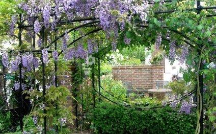 Декор сада своими руками фото