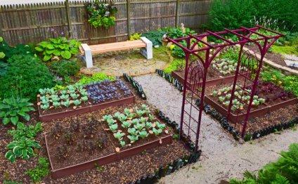 Ландшафтный дизайн сада и