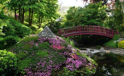 сад, Скачать Обои и Фото