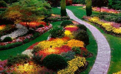Самые популярные садовые