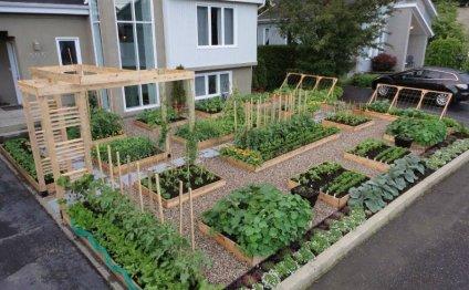 Дом и огород сад и огород